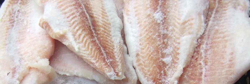 frosen-fisk