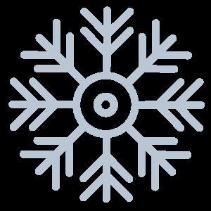 frost-fisk-ikon